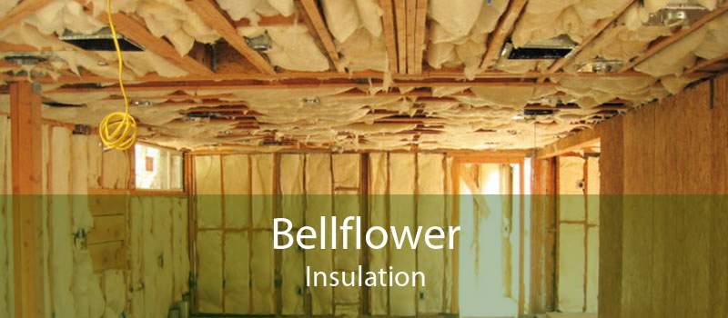 Bellflower Insulation
