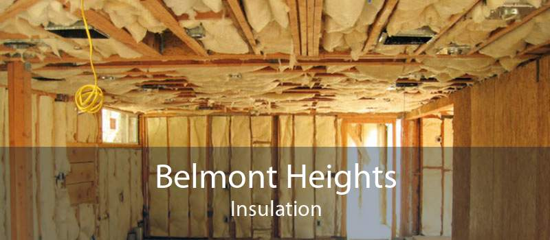 Belmont Heights Insulation
