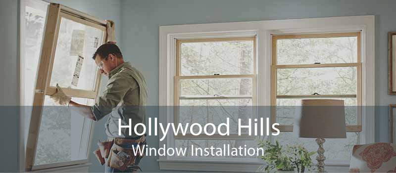 Hollywood Hills Window Installation