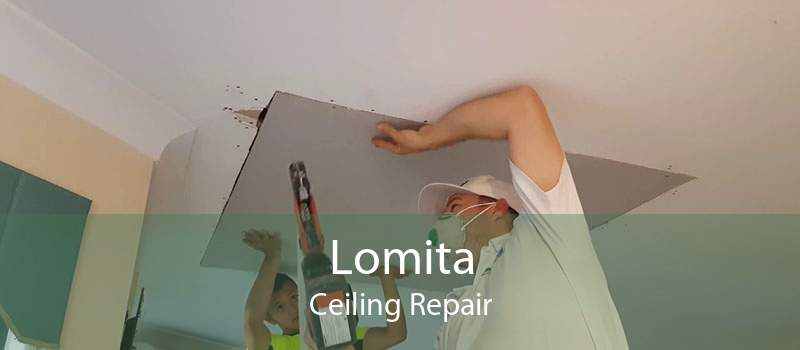 Lomita Ceiling Repair