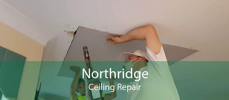 Northridge Ceiling Repair