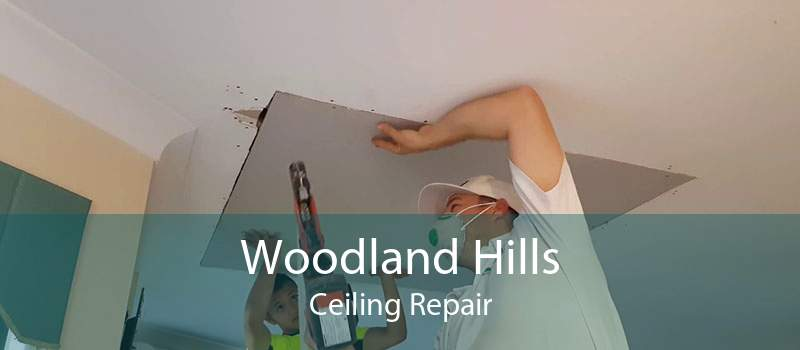 Woodland Hills Ceiling Repair
